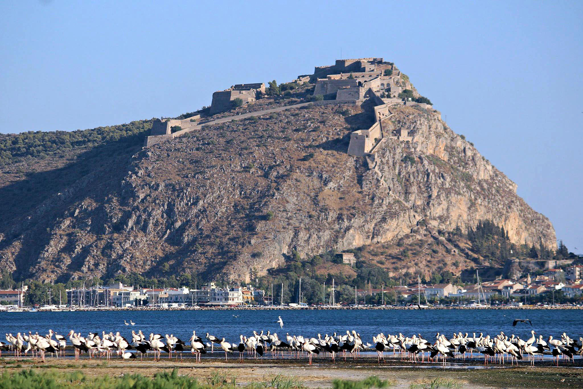 Nafplio private day tour
