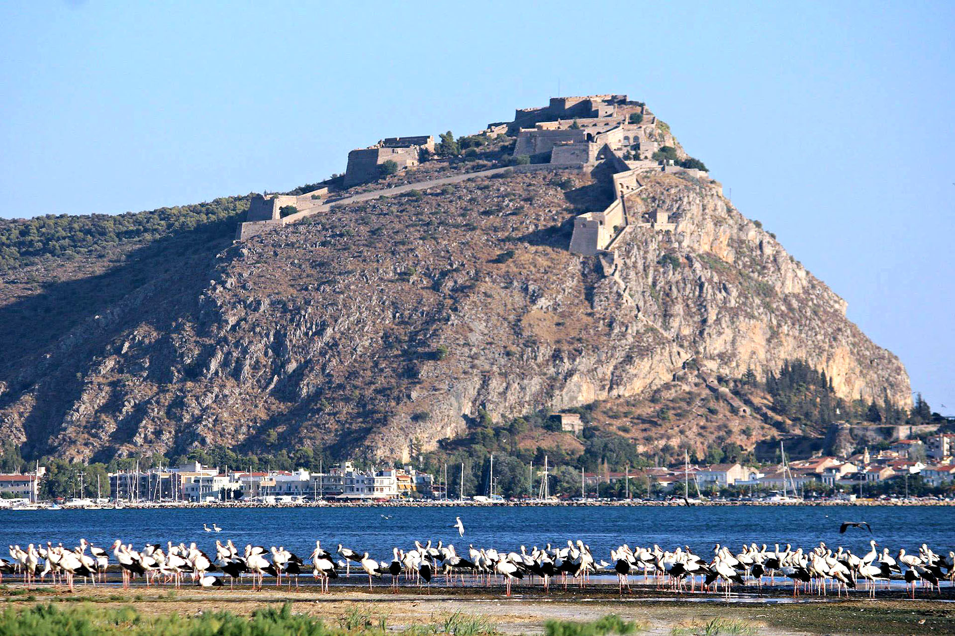 Nafplio town private day tour