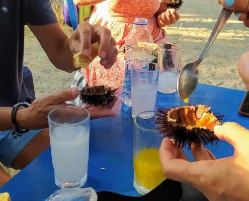food drink seaurchins